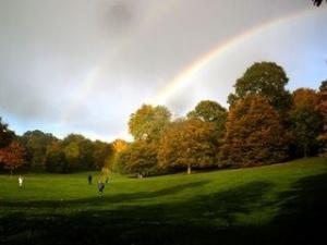 Hamstead Heath Rainbow x