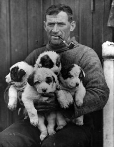Tom Crean with sled dog puppies.